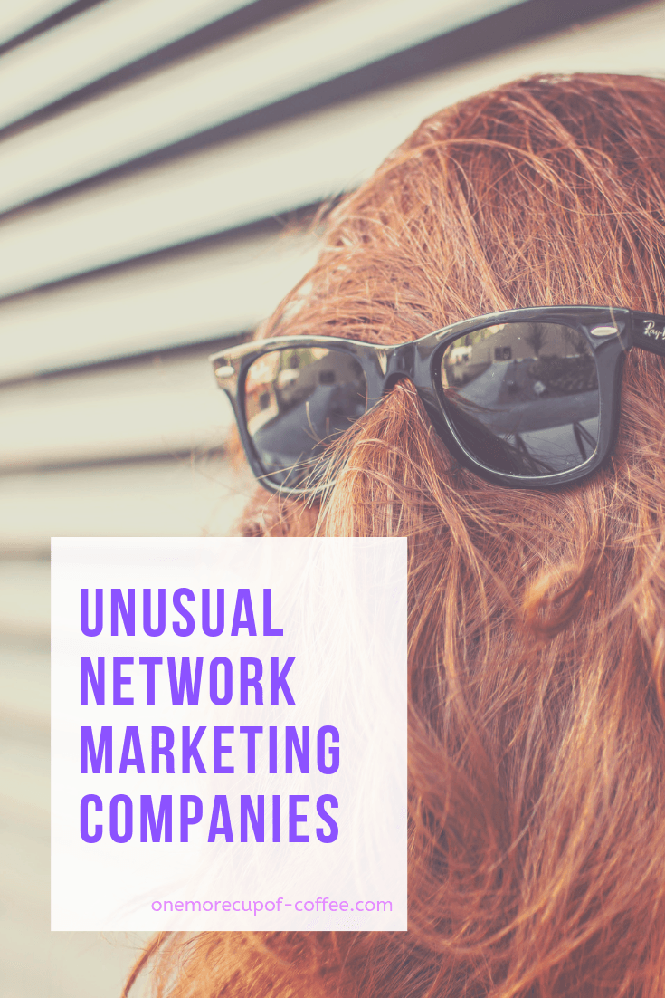 woman with glasses on the back of her head and hair to look like a weirdo. This photo represents unusual network marketing companies that didn't fit in any other category