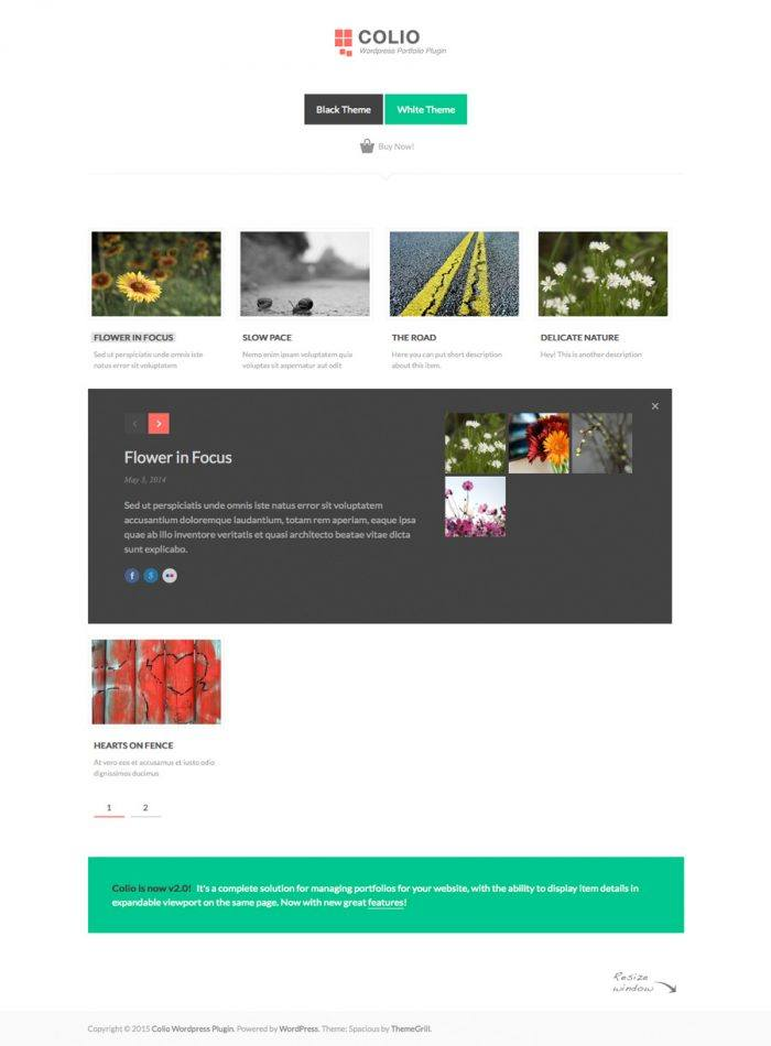 The Coolio homepage displaying a number of portfolios with thumbnails, titles, and brief descriptions, and in the middle of the page is a portfolio displayed inside a black box across the page with a preview of its items, a title, and a longer description.