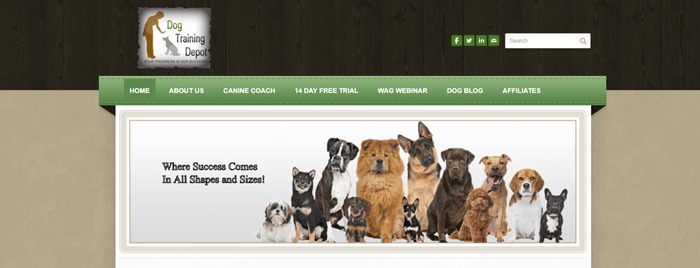 Dog Training Depot website screenshot showing a collection of dogs from different breeds, all facing the camera.