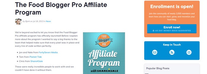 Food Blogger Pro website screenshot with banners and text