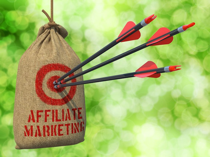 """sand bag hanging in the forest with arrows hitting the center and the word """"affiliate marketing"""" on the bag"""