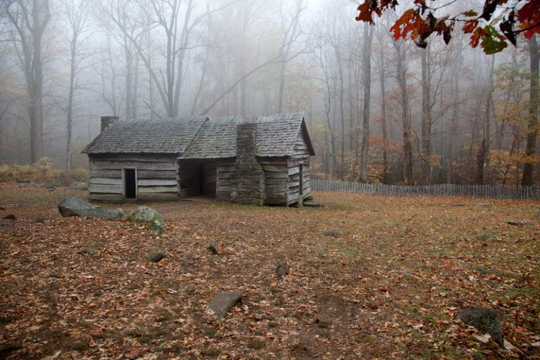 old cabin in the woods around late autumn with dead wet leaves on the grass
