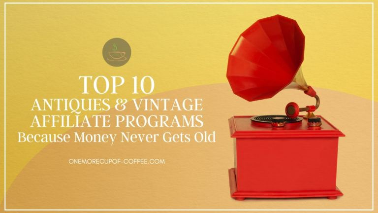 Top 10 Antiques & Vintage Affiliate Programs Because Money Never Gets Old featured image