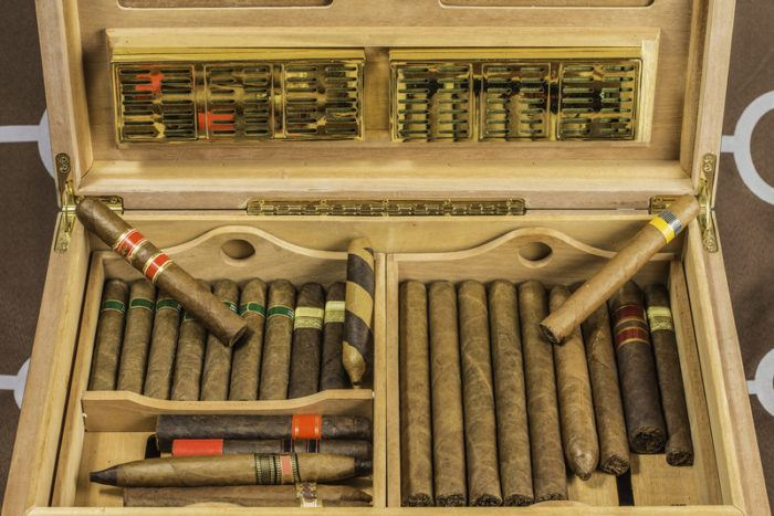 cigar humidor with multiple cigars demonstrating use of LSI keywords for SEO