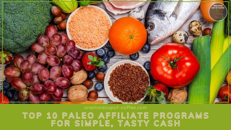 10 Paleo Affiliate Programs For Simple, Tasty Cash featured image