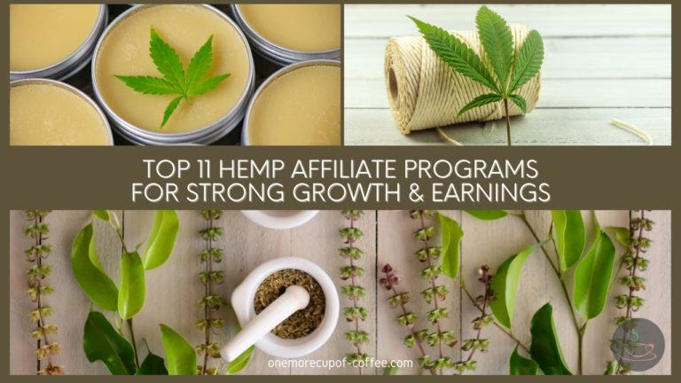Top 11 Hemp Affiliate Programs For Strong Growth & Earnings featured image