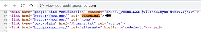 Canonical tag example