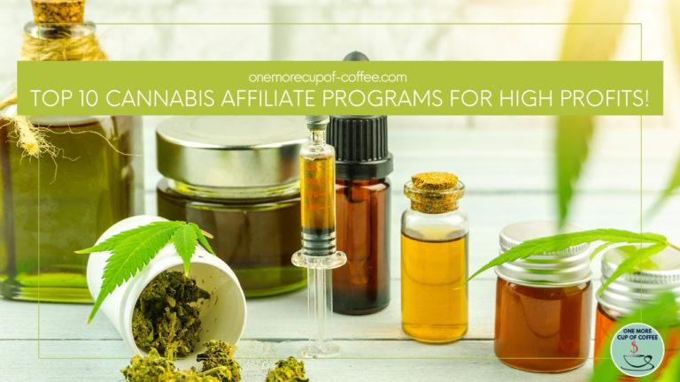 Top 10 Cannabis Affiliate Programs For High Profits featured image
