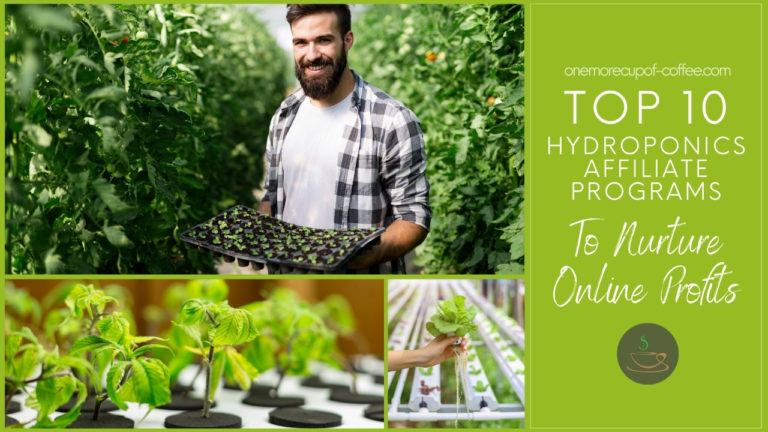 Top 10 Hydroponics Affiliate Programs To Nurture Online Profits featured image