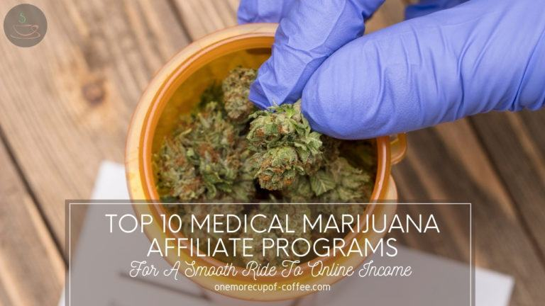 Top 10 Medical Marijuana Affiliate Programs For A Smooth Ride To Online Income featured image