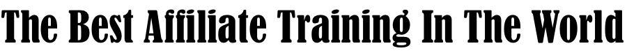 best affiliate training