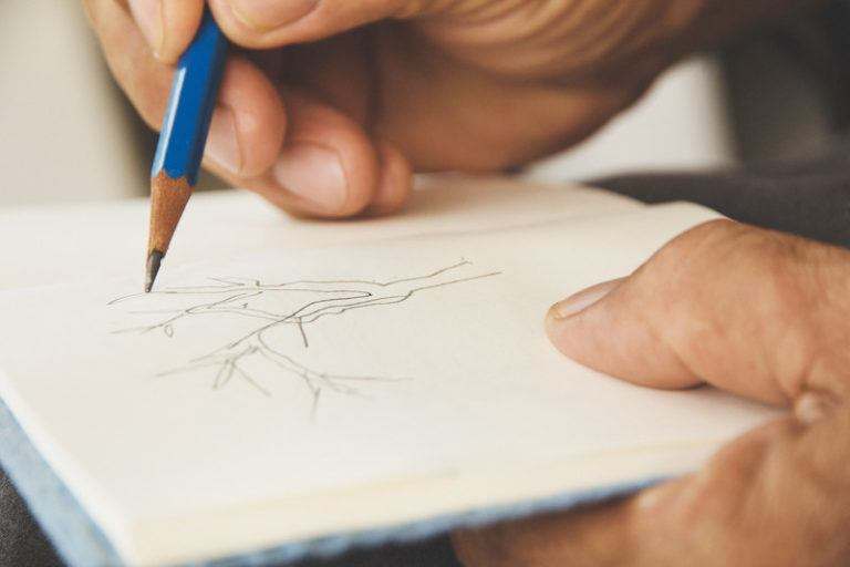 This photo shows the hands of a man holding a sketch book and sketching a tree with a blue pencil, representing the best sketching affiliate programs