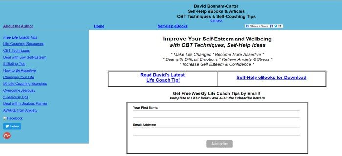 This screenshot of the home page for David Bonham-Carter includes a blue background, a white foreground, and an invitation to participate in some life coaching classes.