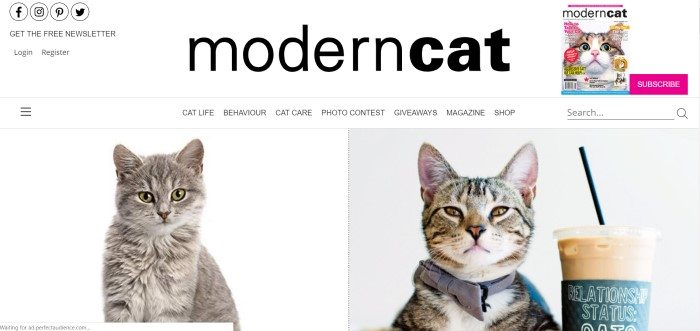 The screenshot of the home page for Modern Cat magazine shows two photographs of gray cats against a white background and a gray background.