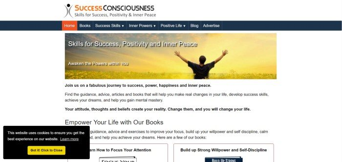 This screenshot of the home page for Success Consciousness includes black text on a white background underneath a photo of a golden sunset with a man stretching out his arms triumphantly, along with the words 'Skills for Success, Positivity and Inner Peace.'
