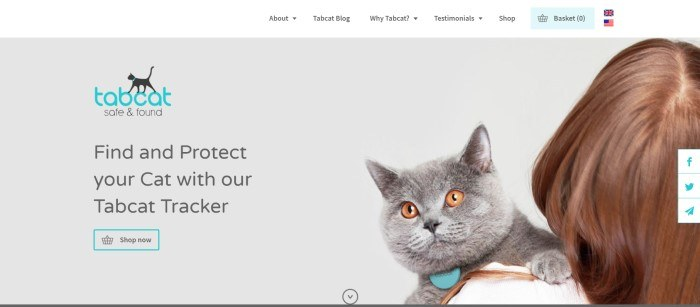 This screenshot of the home page for Tabcat shows a woman with brown hair holding a gray cat with yellow eyes against a gray background.