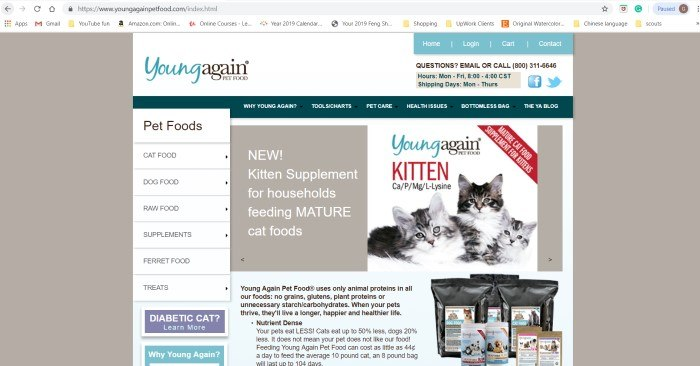 This screenshot of the home page for Young Again Pet Food has a beige background with a large white window containing various text boxes and a picture of two gray and white cats.