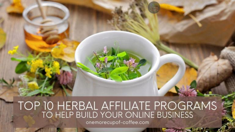 Top 10 Herbal Affiliate Programs To Help Build Your Online Business featured image
