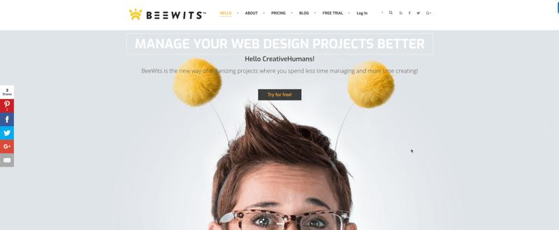 beewits affiliate program screenshot