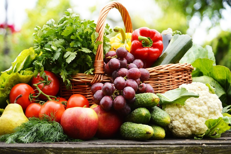 This photo shows a basket of fresh fruits and vegetables, including tomatoes, cucumbers, grapes, and a red bell pepper, representing the best food affiliate programs.