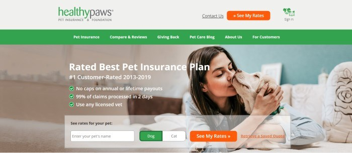 This screenshot of the home page for Healthy Paws has a green navigation bar above a photo of a brunette teenage girl kissing the face of a white dog, along with an information window for getting insurance rates for a dog or a cat.