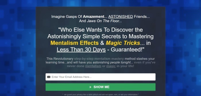 This screenshot of the home page for Master Mentalism has a background made of medium blue and darker blue squares, with a black-background page running in the center with sales text and an opt-in window, along with a green call-to-action button, where interested shoppers can submit their email address for more information.