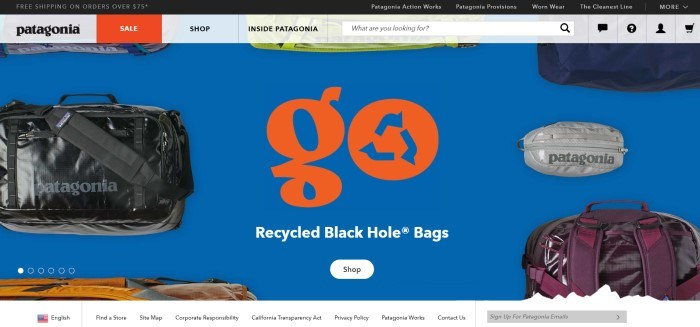 This screenshot for the home page of Patagonia shows a royal blue background filled with several styles, shapes, and colors of bags, along with red lettering that reads 'Go' and then, in white lettering, 'Recycled black hole bags.'