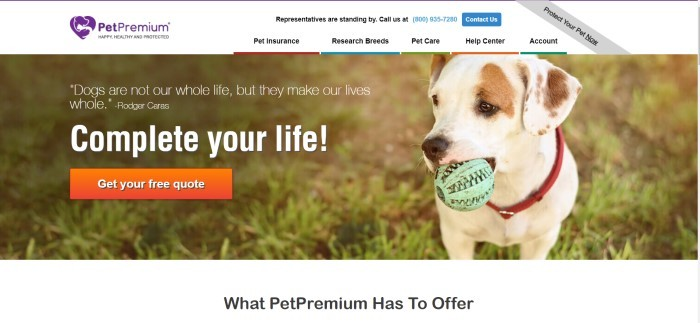 This screenshot of the home page for PetPremium has a white background with a photo of a white and brown dog sitting on some grass with a green ball in its mouth, next to white lettering that invites people to get pet insurance above an orange call-to-action button.