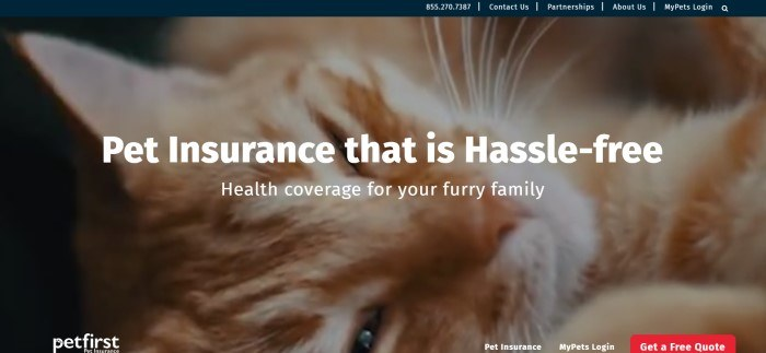 This screenshot of the home page for Petfirst has a large close-up photo of the face of an orange-colored cat, along with white text that reads 'Pet insurance that is hassle-free.'