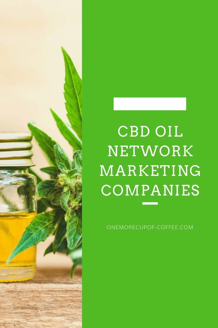 "cbd oil jar with main title, ""CBD OIL NETWORK MARKETING COMPANIES"""