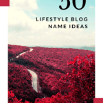 LIFESTYLE blog name ideas