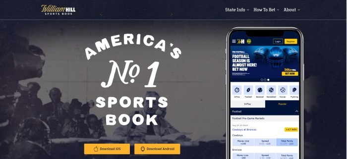 "This screenshot of the home page for William Hill shows an old black and white photo of men that appear to be watching a sporting event, behind white text that reads ""No.1 sports book."""