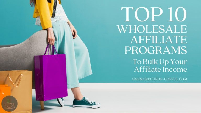 Top 10 Wholesale Affiliate Programs To Bulk Up Your Affiliate Income featured image