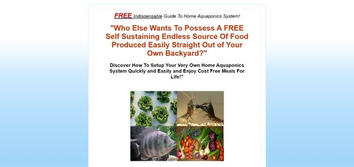 This screenshot of the home page for Aquaponics System How-To includes a light blue background, a white center section, red and black text describing the benefits of aquaponics, and four photos that include home-grown vegies, shrimp and fish in aquaponics settings, and leafy greens growing from an aquaponics system.