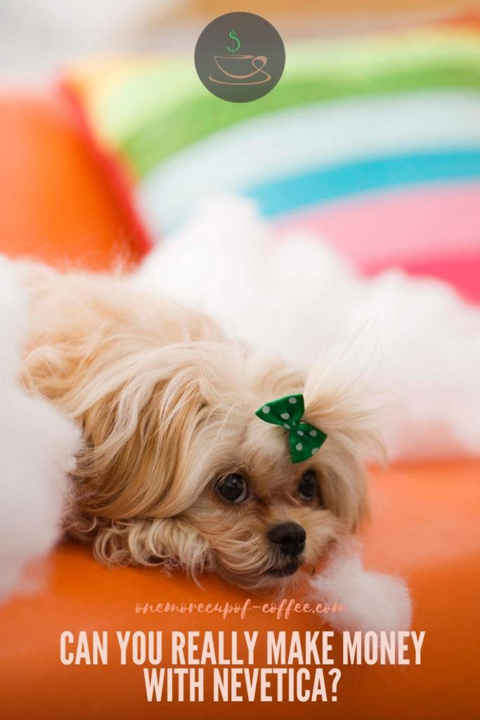 shih tzu with a tiny green ribbon resting on an orange couch, with text overlay