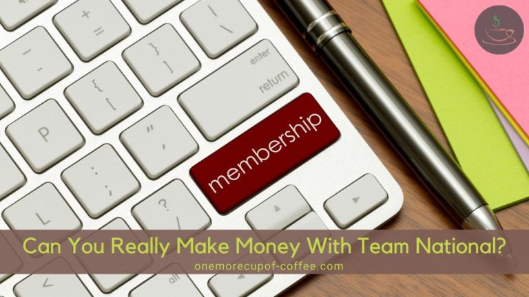 Can You Really Make Money With Team National featured image