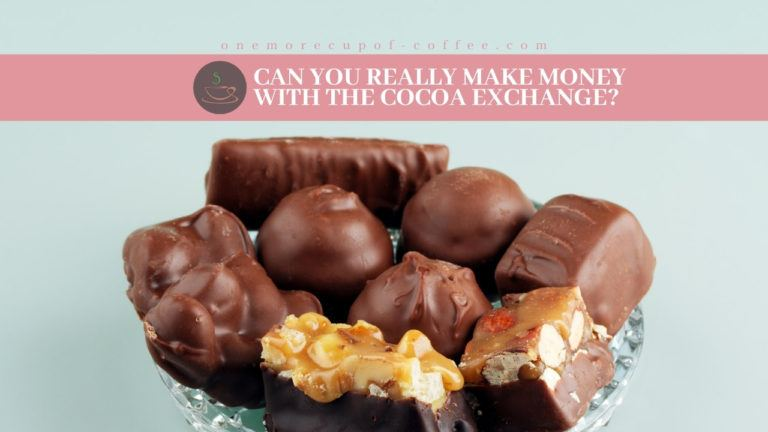Can You Really Make Money With The Cocoa Exchange featured image