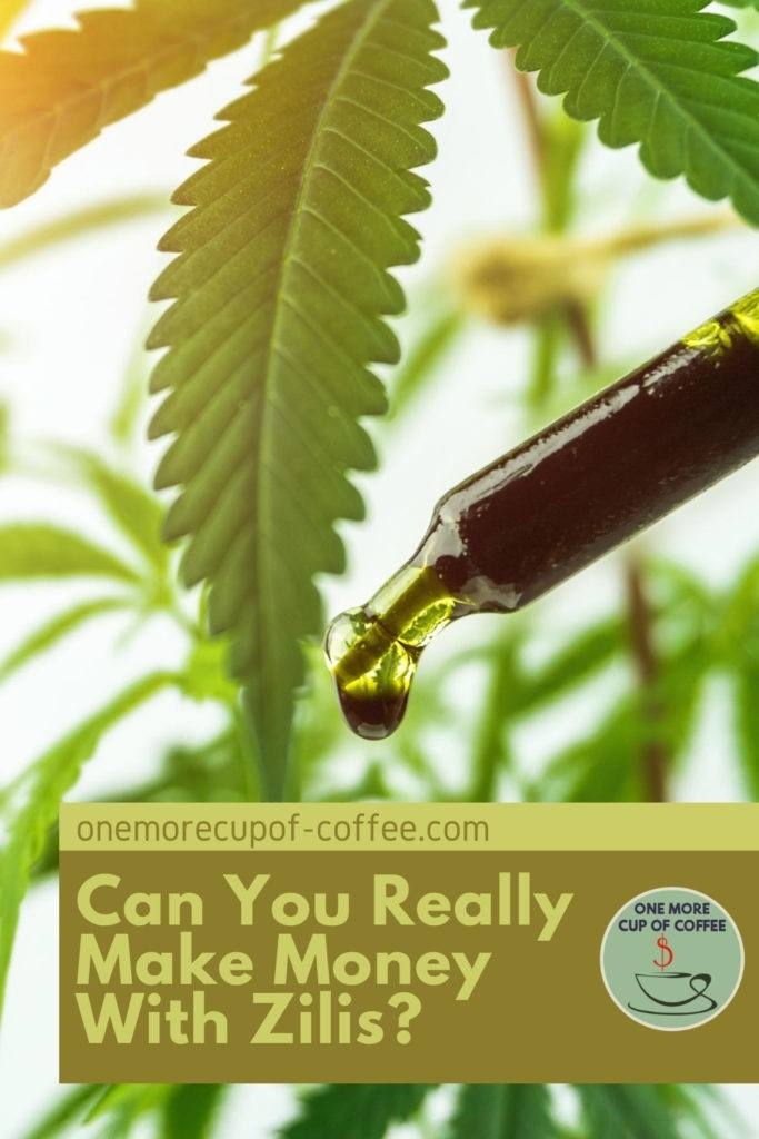closeup image of a dropper with cbd oil with marijuana leaves on the back, with text overlay