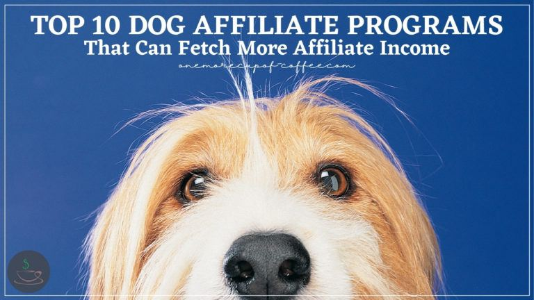 Top 10 Dog Affiliate Programs That Can Fetch More Affiliate Income featured image