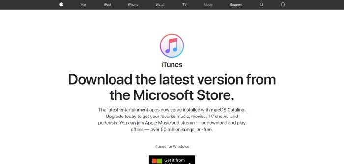 This screenshot of the home page for Apple iTunes has a black navigation bar above a white section with black text inviting shoppers to download the latest version of iTunes.