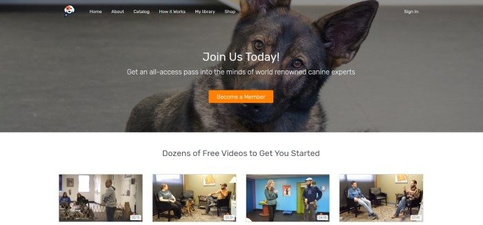 This screenshot of the home page for Consider the Dog has a dark filtered photo of a brown and black dog with brown eyes looking quizzically toward the camera, behind white text inviting website visitors to join the website and an orange call-to-action button.