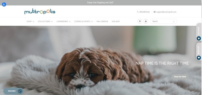 This screenshot of the home page for Muttropolis has a photo of a brown dog lying on a soft gray dog bed, below a white navigation bar and the logo for Muttropolis.