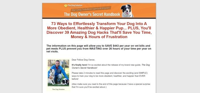 This screenshot of the home page for The Dog Solution has a gray background, with an orange header in the center of the page above a white text section that includes a photo of a man in a blue jacket holding a black and white dog and text in black and red describing a dog training handbook.