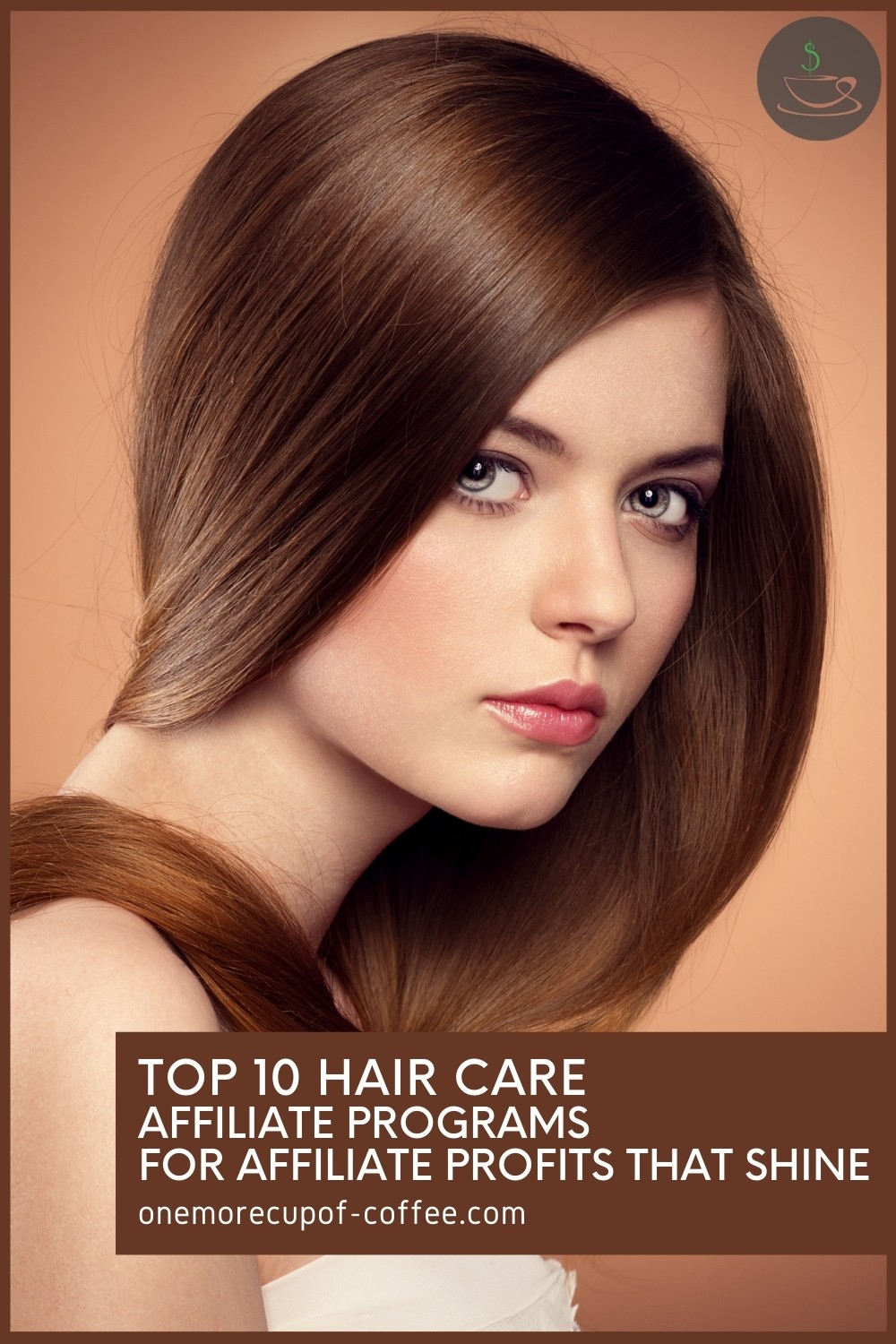 """woman with chestnut brown long hair with a text overlay """"Top 10 Hair Care Affiliate Programs For Affiliate Profits That Shine"""""""