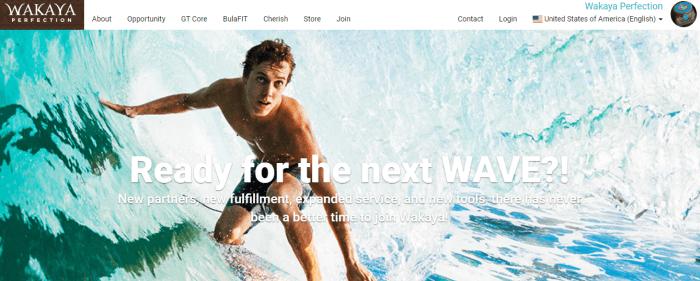 A Wakaya Perfection screenshot showing a young man riding a wave