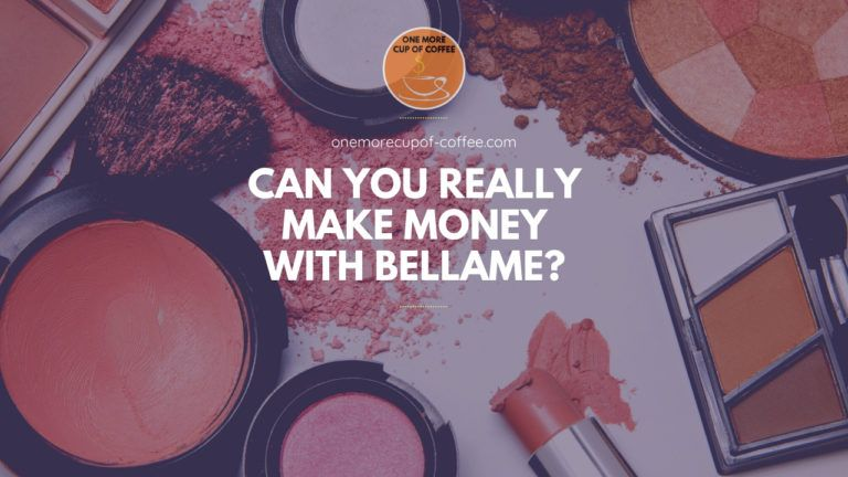 Can You Really Make Money With Bellame feature image