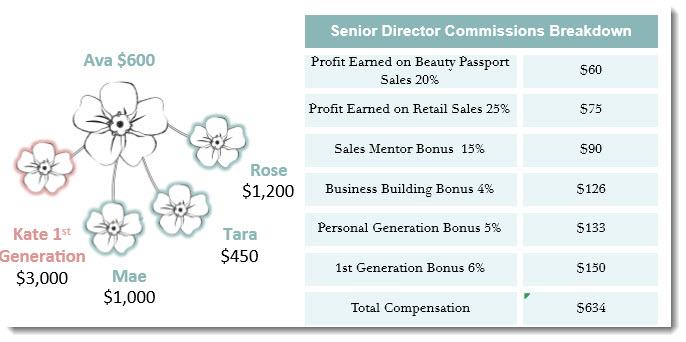 Senior Director Income
