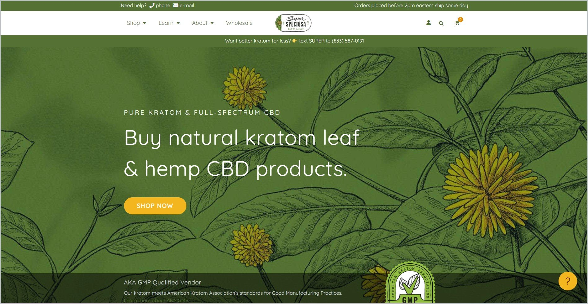 screenshot of Super Speciosa homepage, with white header bearing the website's name and main navigation menu, with a drawing of plants in dominantly green color