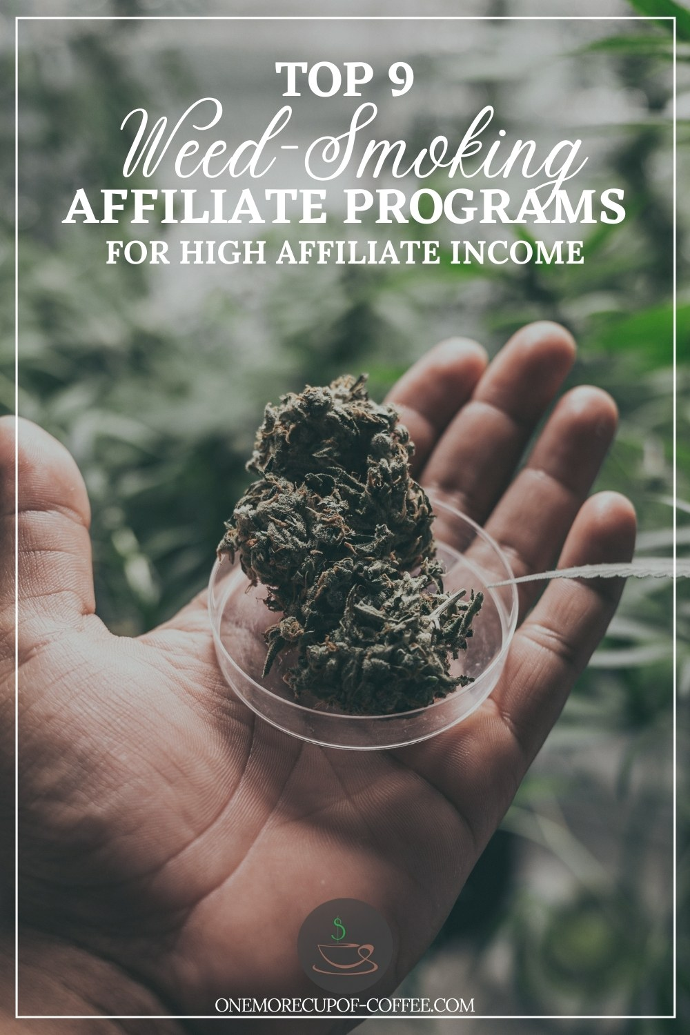 """closeup image of a hand holding a round transparent dish with dried marijuana leaves, with marijuana plants at the background; with text overlay """"Top 9 Weed-Smoking Affiliate Programs For High Affiliate Income"""""""