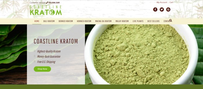 This screenshot of the home page for Coastline Kratom has a white and beige header with a green logo above a filtered photo of powdered kratom in a white bowl next to kratom leaves on a wooden table, along with a white text box describing why people should buy Coastline Kratom products and a green call-to-action button.
